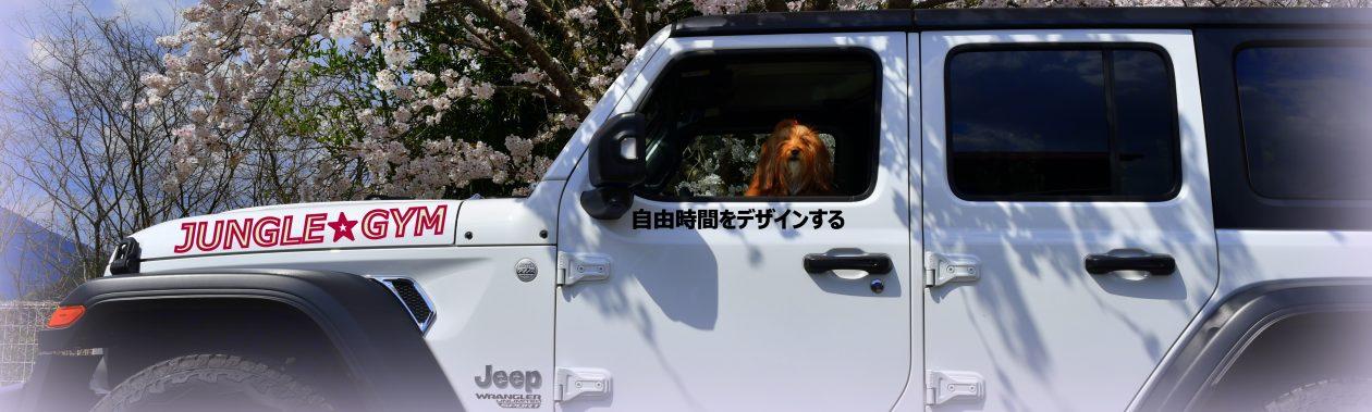JUNGLE☆GYM